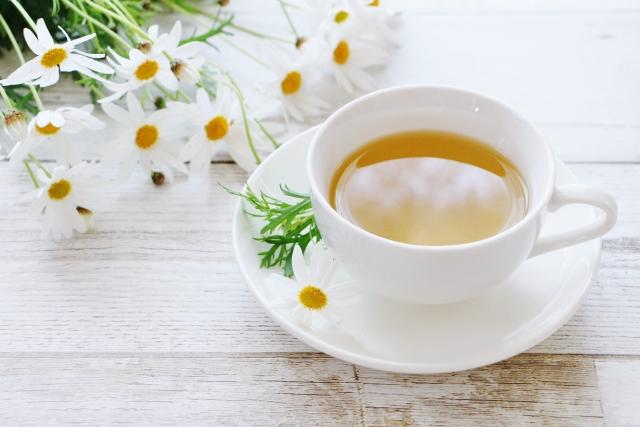紅茶と烏龍茶と緑茶それぞれどんなお茶?意外な共通点とは?