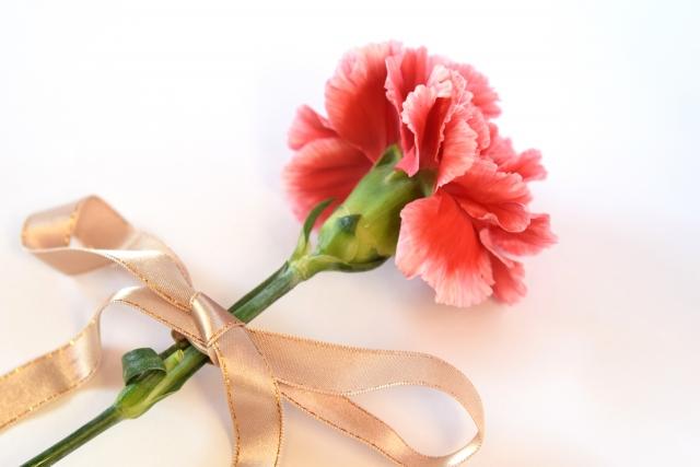 卒業式での卒業祝いに贈る花!一輪の花でも華やかな演出に!